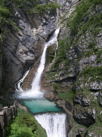 Nature in  Lake Bohinj, Slovenia, visiting things to do in Slovenia, Travel Blog, Share my Trip