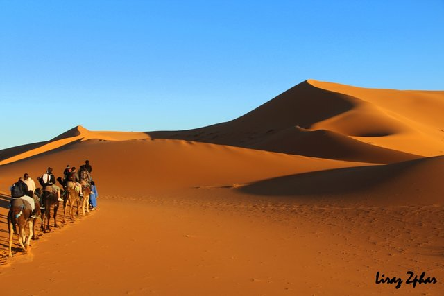 Sightseeing in  Sahara Desert, Morocco, visiting things to do in Morocco, Travel Blog, Share my Trip