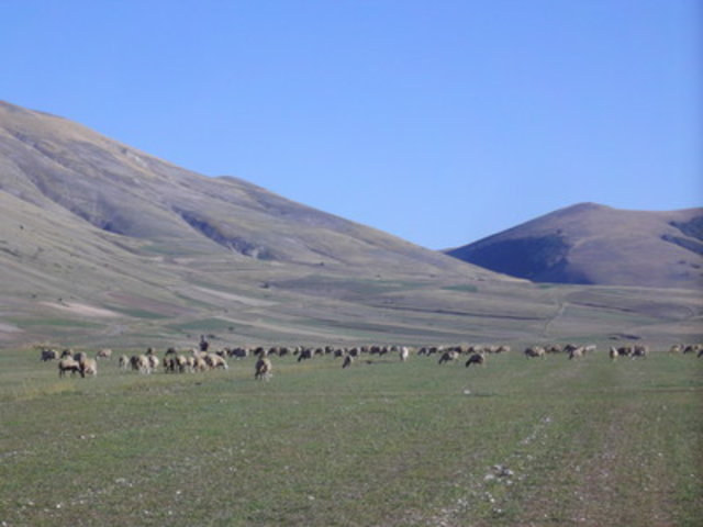 Sightseeing in  Castelluccio, Province of Perugia, Italy, Italy, visiting things to do in Italy, Travel Blog, Share my Trip