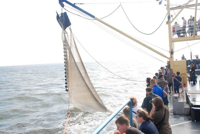 Kids in  Texel, Netherlands, visiting things to do in Netherlands, Travel Blog, Share my Trip